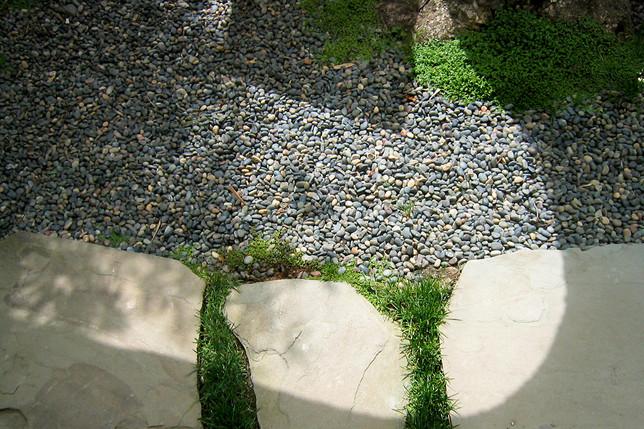 Wellesley-shadow-Ryan.jpg