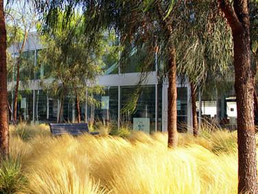 Otay Mesa Nestor Library