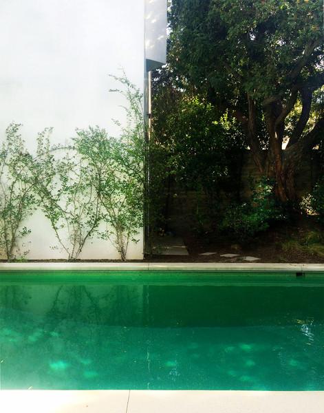 OceanPark-pool.jpg