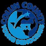 CCYD_Logo-removebg.png