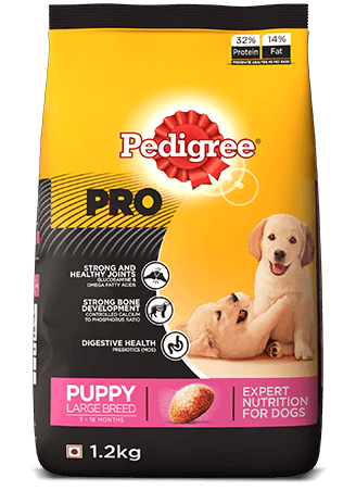 Pedigree Professional Puppy large breed