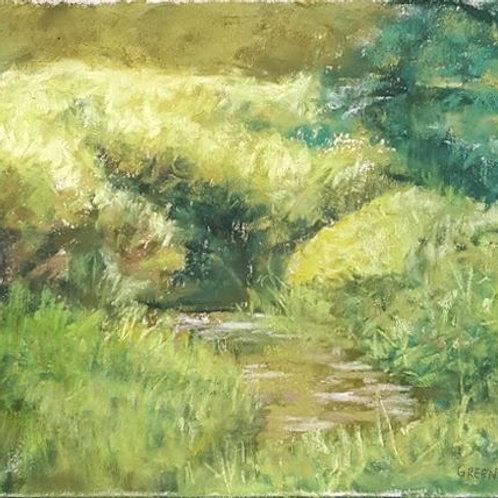 Evans Creek Preserve #1