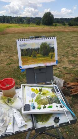 Marymoor park study