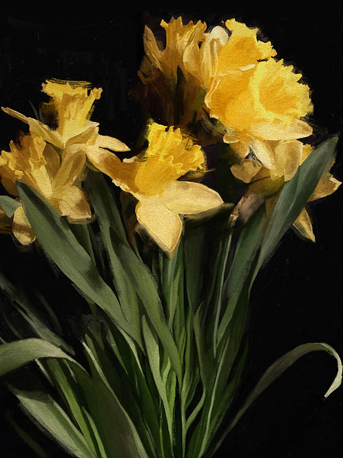 Daffodils (Print)