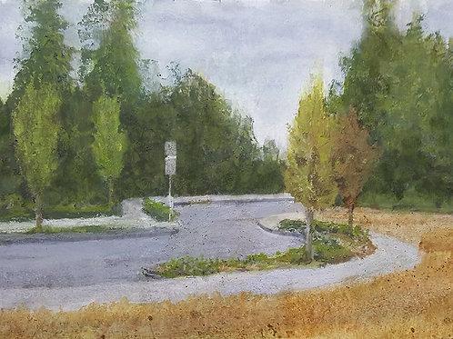 Issaquah Highlands Park