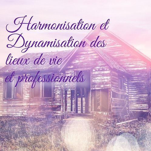 Harmonisation et Dynamisation des lieux de vie ou professionnels