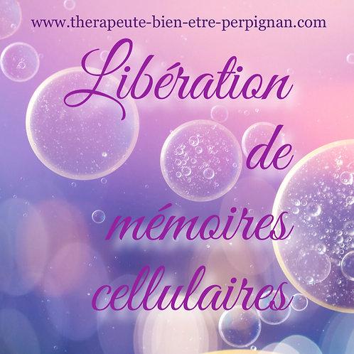 Libération de mémoires cellulaires