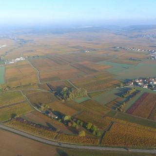 Vignes_et_montgolfière.jpg