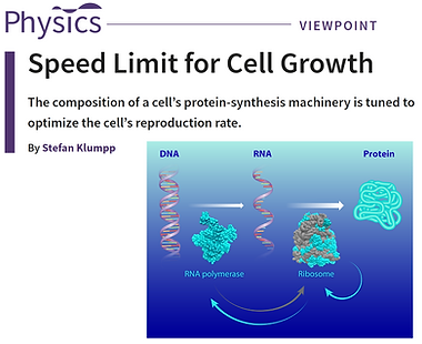 Speed Limit for Cell Growth.png