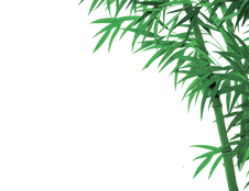 bamboo_PNG64.png