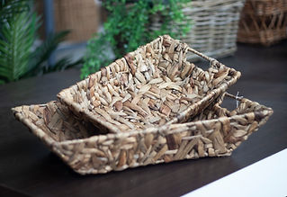 water hyacinth trays