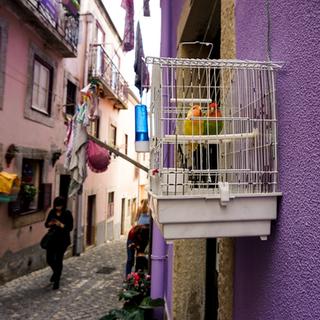 Lisbonne - photographie