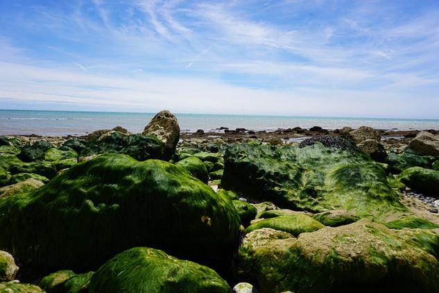 Camille-Obligis---Downs-Eastbourne-6.jpg