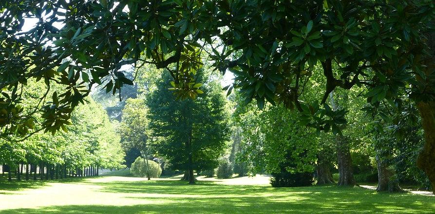 parc chateau.jpg