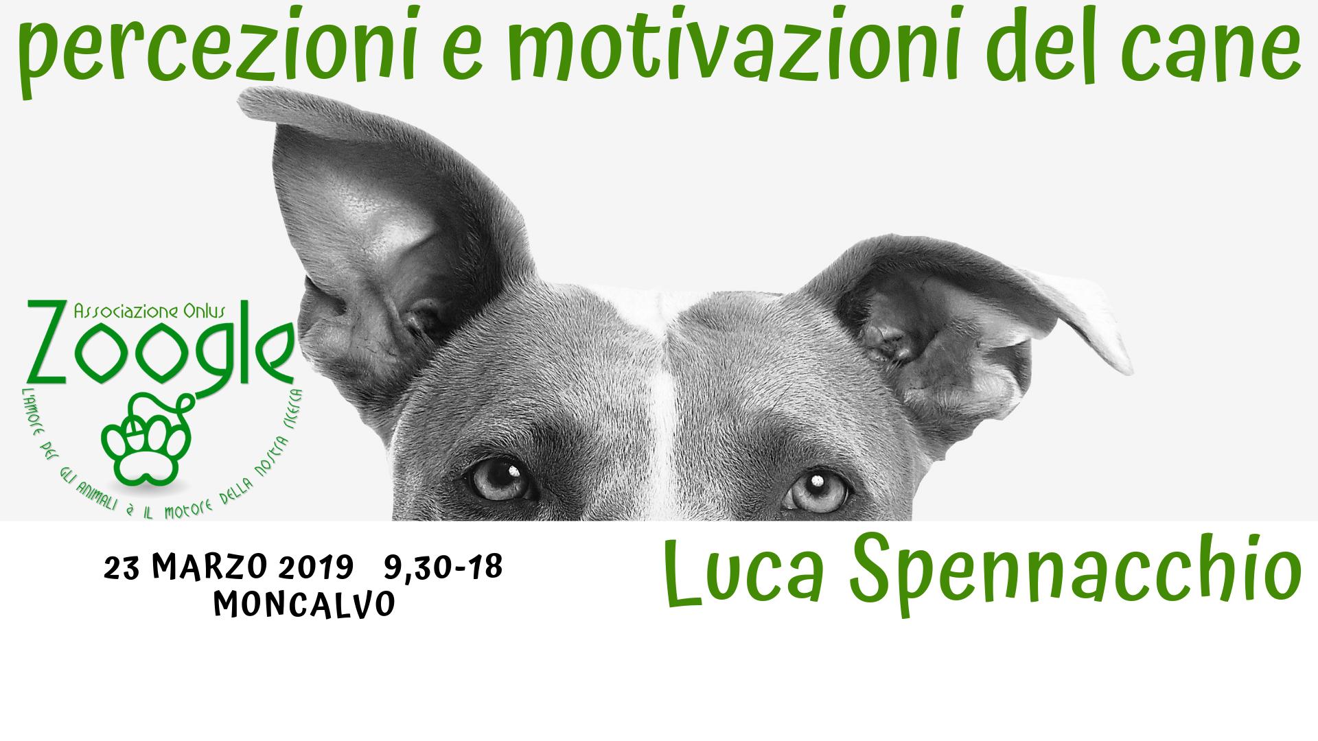 percezioni e motivazioni del cane