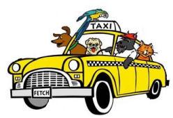 Pet Taxi!