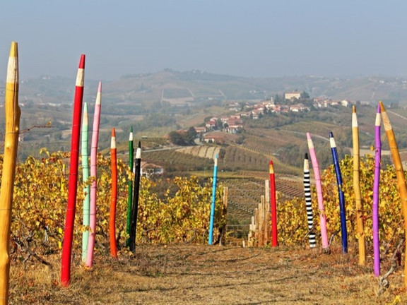 Avenue of pencils between Monferrato and Langhe