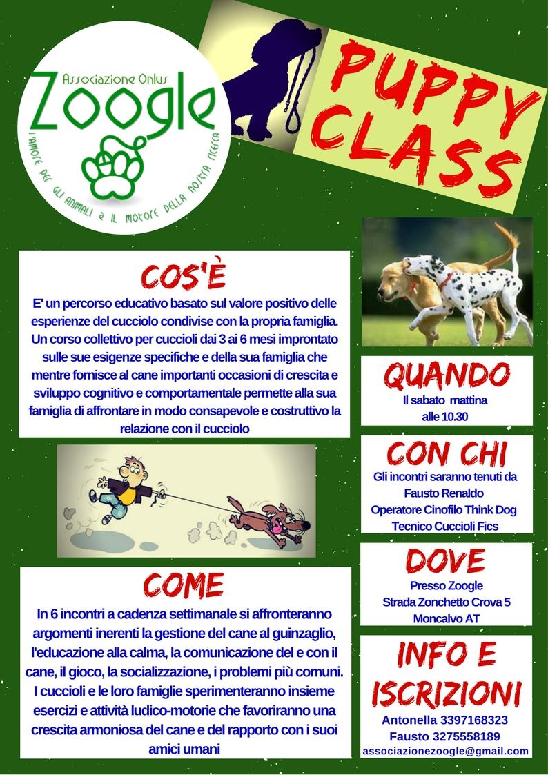 PuppyClass|