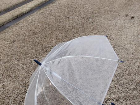 _Kyoto umbrella-07-Japan.19.jpg