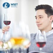 WSET Wine Education Week, classes at Saint Paul College, September 9-14th-register today!