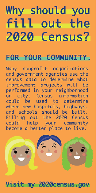 Census Graphics-01.png