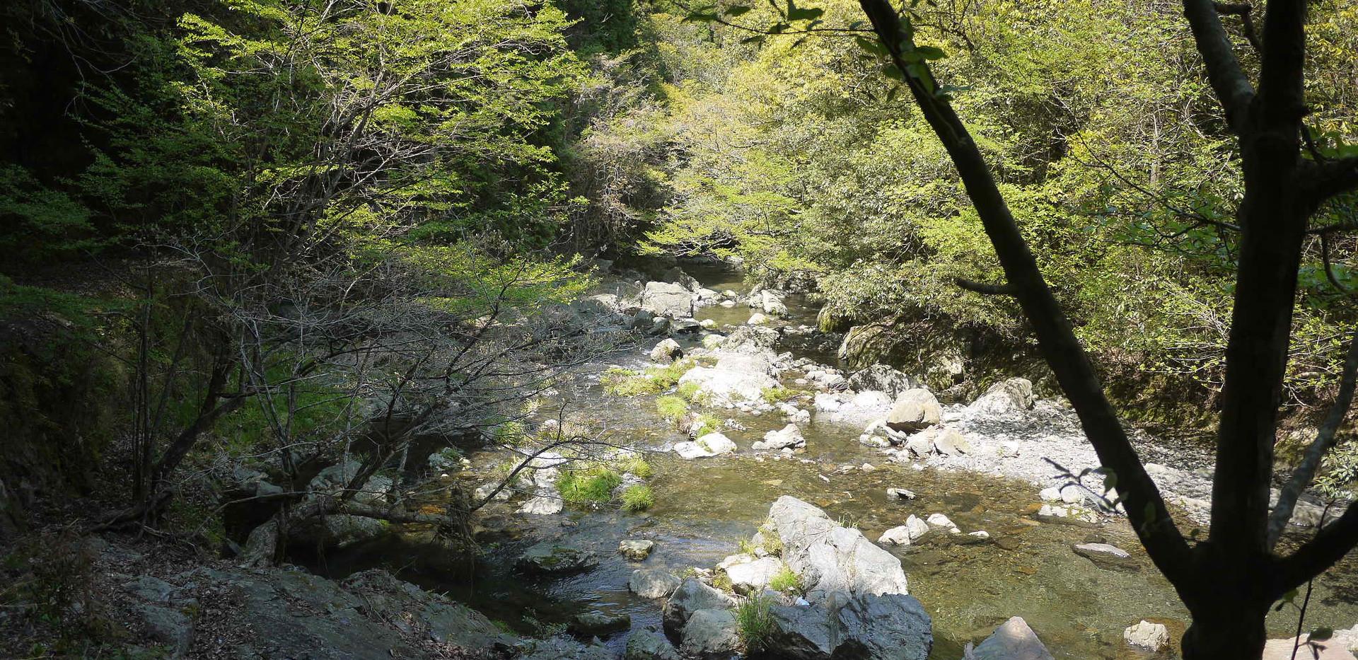 梅津の滝 上流  撮影 清流 松本