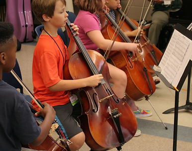 more cellos.jpeg