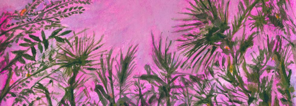 Tropical dusk copy.jpg