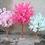 Thumbnail: Cherry  blossom tree wedding centrepiece/ Pathway decor