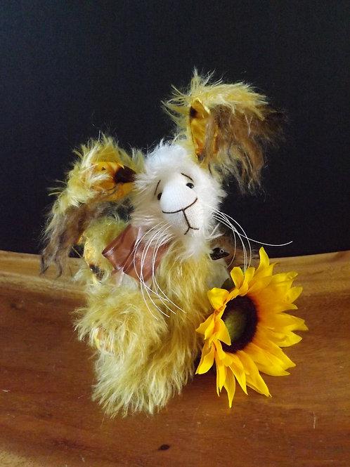 Rabbit 'Sunny Bunn'