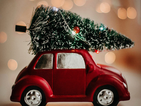 Christmas look