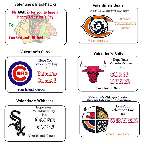 Chicago Sports Team COLLECTION