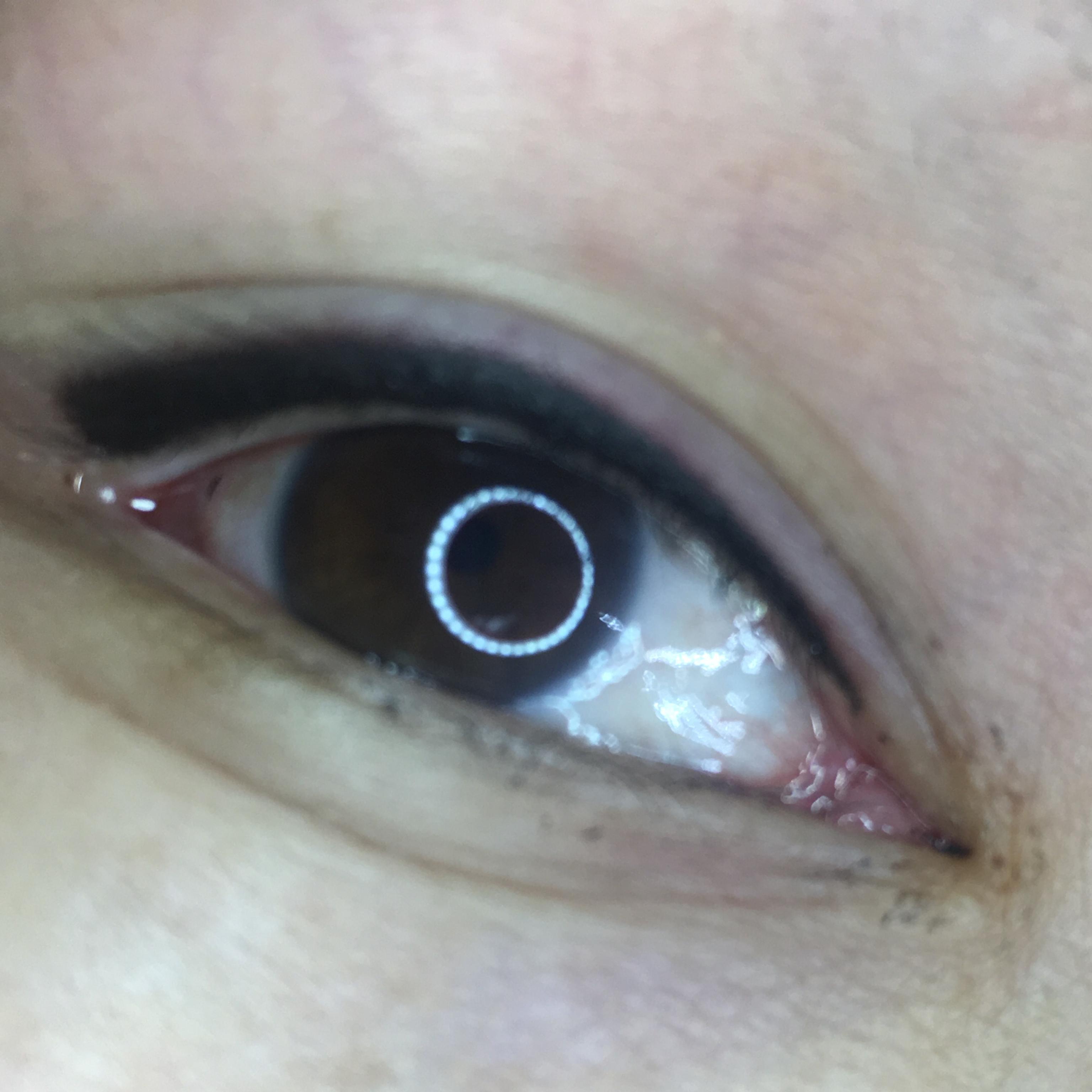 Eyeliner, PMU