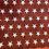 Thumbnail: Kids American Stars