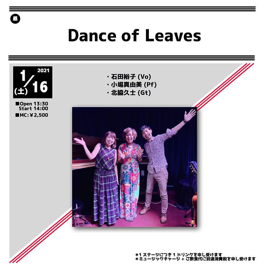 Dance of Leaves
