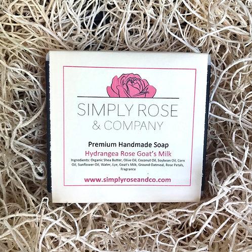 Hydrangea Rose