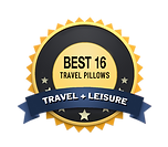 BEST 16 TRAVEL PILLOWS + LEISURE.png