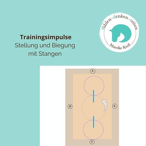 Trainingsimpulse Nr. 1 Stellung/Biegung mit Stangen