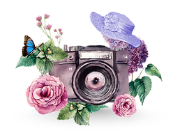 000camera watercolor-painting.png