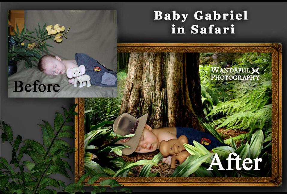 0 Gab in Safari 2021 by wp.jpg
