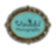 1 Logo Oval wandaful.png