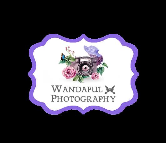 000camera-wandaful photography png.png