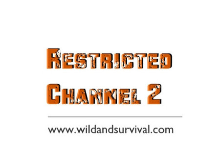 Restricted Channel nr.2