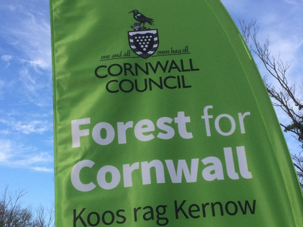 Forest for Cornwall - tell Cornwall Council if you plant a tree!