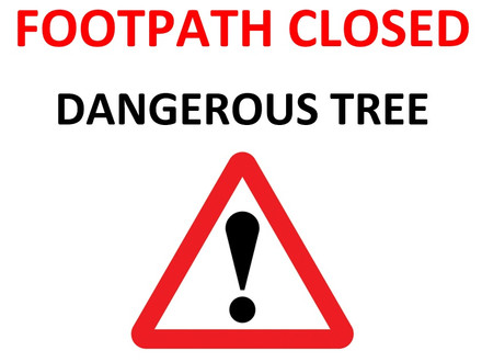 Footpath 21 closed due to fallen tree