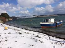 Loe Beach in the snow2.jpg