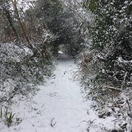 Carnon Downs snow13.jpg