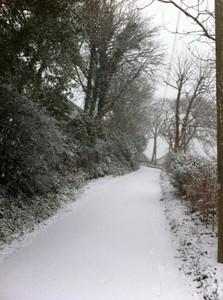 Trovler Hill Feock snow1.jpg