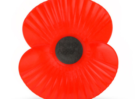 Poppies available from Devoran Community Library