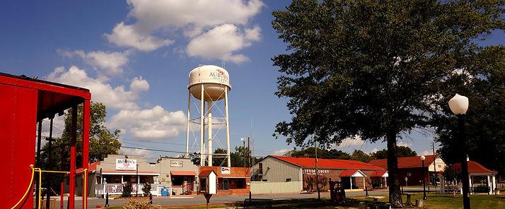 Auburn GA